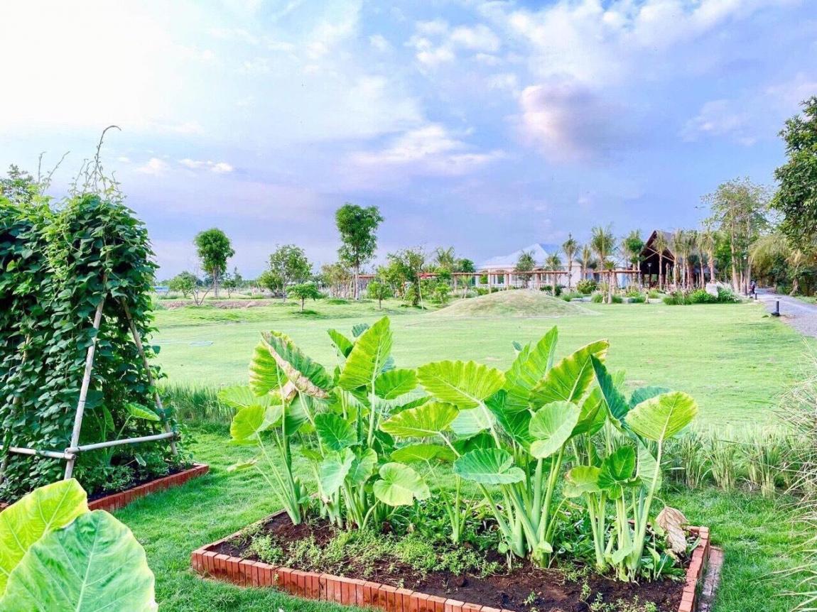 hình ảnh thực tế dự án biệt thự vườn saigon garden riverside quận 9 8