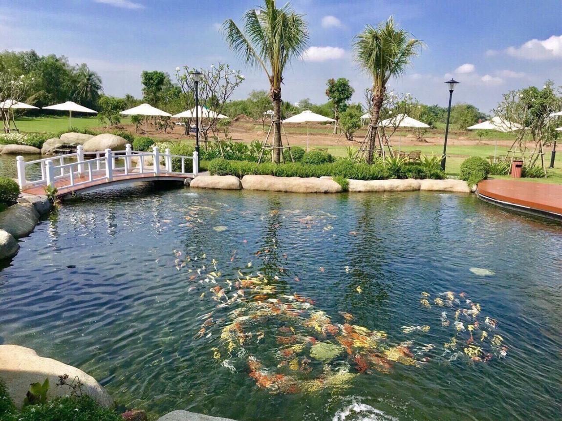 tiến độ thi công dự án biệt thự vườn saigon garden riverside village 2